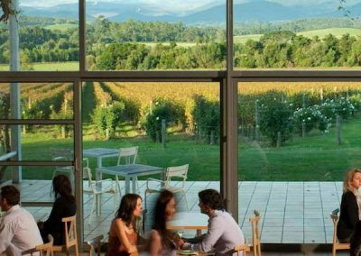 Views from Domaine Chandon
