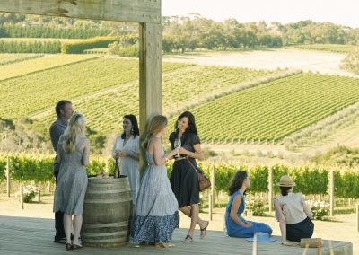 Mornington Wine Tasting at Montalto Vineyard